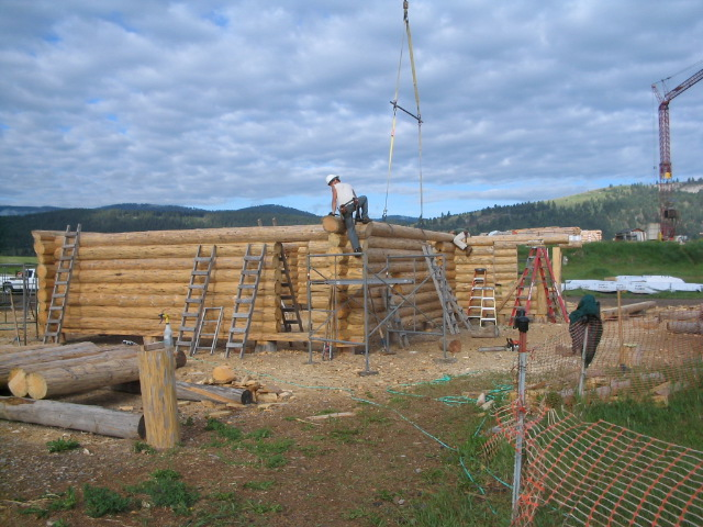 Setting the log