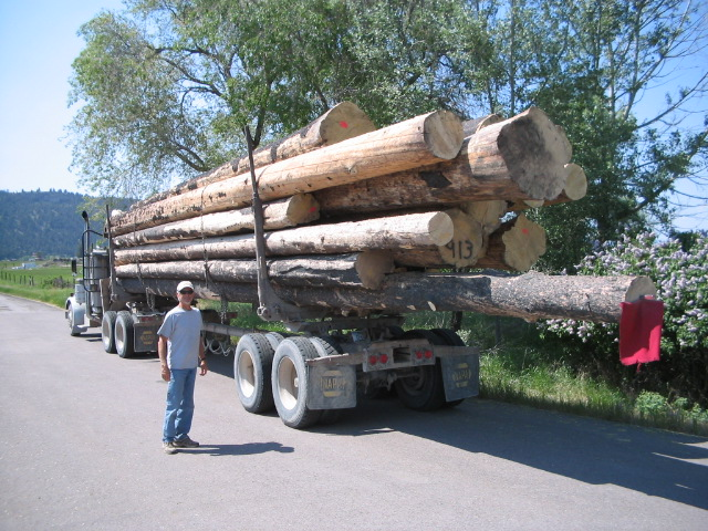 Bringing in the Massive Logs