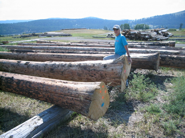 Jim B. with a couple of flare base logs for posts