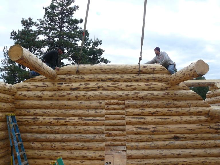 Odin and John setting a gable log