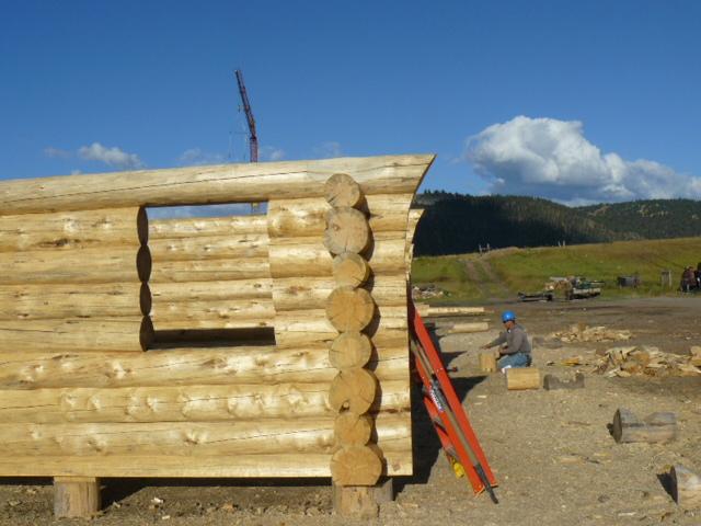 Half sweep log endstyle