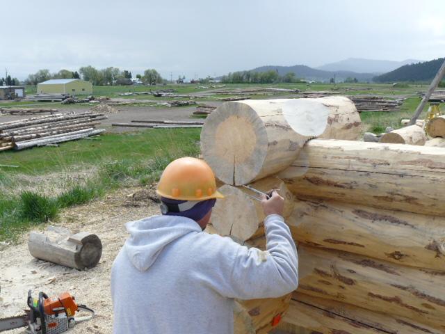 Scribing a log
