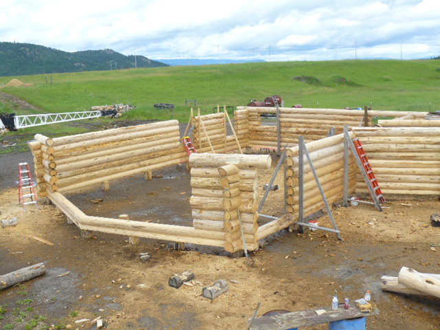 Log House Walls