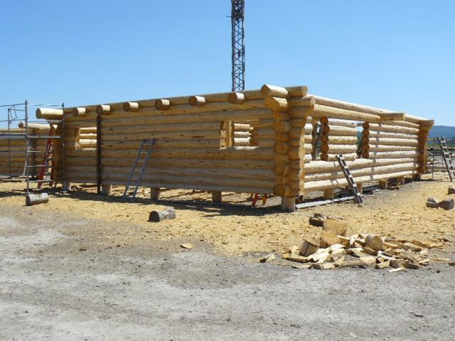 Back Wall w/ Loft Logs