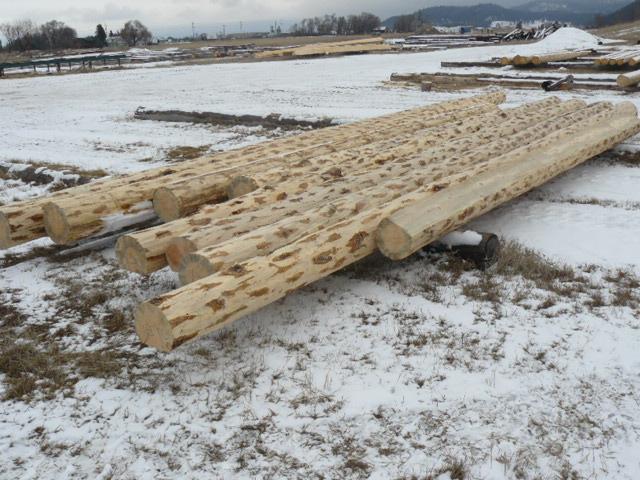 Preparing logs