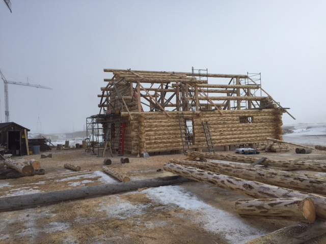 Purlins in place!