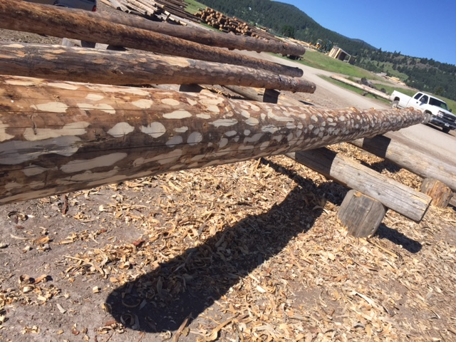 Hand peeled logs